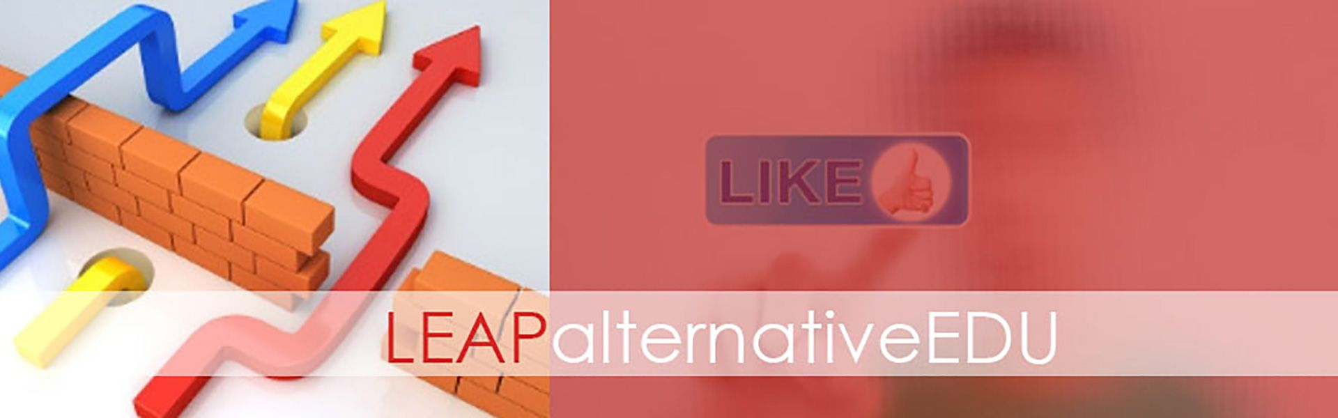 Leap Alternative